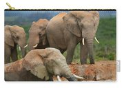 Elephant Bath Carry-all Pouch
