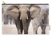 Elephant Bathing Carry-all Pouch by Johan Swanepoel