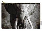 Elephant Bull Carry-all Pouch