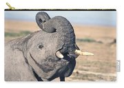 Elephant Curling Trunk Carry-all Pouch