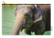 Elephant In Water Carry-all Pouch
