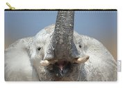 Elephant Portrait Carry-all Pouch by Johan Swanepoel