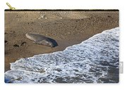 Elephant Seal Sunning On Beach Carry-all Pouch