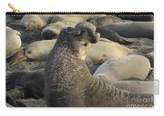 Elephant Seals Carry-all Pouch