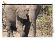 Elephant Stroll Carry-all Pouch
