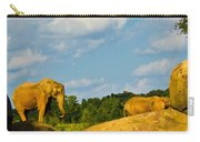 Elephants Among The Rocks. Carry-all Pouch