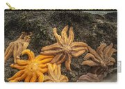 Eleven-armed Sea Stars At Low Tide Carry-all Pouch