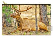 Elk In Kiabab National Forest Arizona Carry-all Pouch