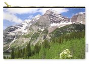 Elk Mountains Carry-all Pouch by Eric Glaser