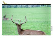 Elk Resting On A Meadow In Great Smoky Mountains Carry-all Pouch by Alex Grichenko