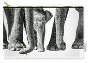 Ella The Baby Giant Herbivore Carry-all Pouch