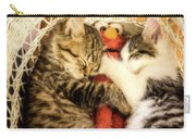 Elmos Nap Time---soft Look Carry-all Pouch