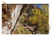 Emerald Falls Zion National Park Carry-all Pouch