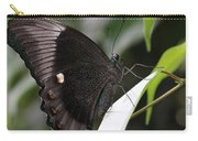 Emerald Peacock Swallowtail Butterfly #6 Carry-all Pouch