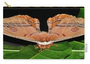 Emperor Gum Moth - 6 Inch Wing Span Carry-all Pouch