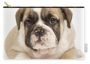 English Bulldog Puppy Carry-all Pouch