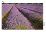 English Lavender Near Alton In Hampshire Carry-all Pouch