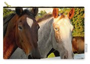 Equestrian Beauties Carry-all Pouch