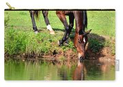 Equine Reflections Carry-all Pouch