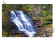 Erie Falls Panorama Carry-all Pouch