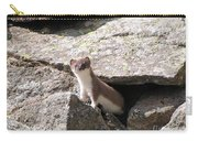 Ermine Carry-all Pouch