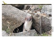 Ermine In Wildlife Carry-all Pouch