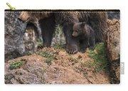 Eurasian Brown Bear 15 Carry-all Pouch