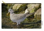 Eurasian Collared Dove Carry-all Pouch
