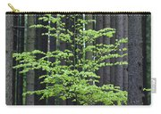European Beech Tree In Noway Spruce Carry-all Pouch
