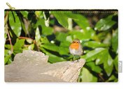 European Robin Carry-all Pouch