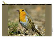 European Robin Square Carry-all Pouch