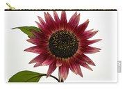 Evening Sun Sunflower 2 Carry-all Pouch