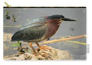 Everglades Green Heron Carry-all Pouch