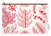 Examples Of Florideae From Kunstformen Der Natur Carry-all Pouch by Ernst Haeckel