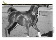 Exercising Horse Bw Carry-all Pouch