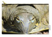 Eye Liner Turtle 8494 Carry-all Pouch