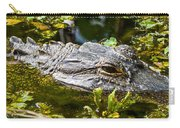 Eye Of The Alligator Carry-all Pouch