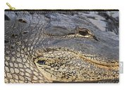 Eye Of The Gator Carry-all Pouch by Adam Jewell