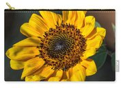 Eye Of The Sun Carry-all Pouch