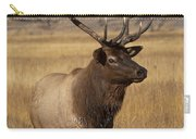 Eyeing The Harem Carry-all Pouch by Sandra Bronstein