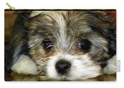 Eyes On You Carry-all Pouch by Karen Wiles