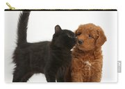 F1b Goldendoodle Pup With Kitten Carry-all Pouch