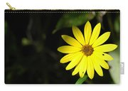 Facing The Light 2 Carry-all Pouch