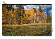 Fall Along Bishop Creek Carry-all Pouch