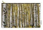 Fall Aspens Carry-all Pouch by Adam Romanowicz