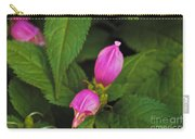 Fall Buds Carry-all Pouch