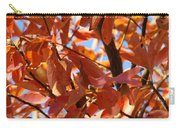 Fall Color 2 Carry-all Pouch