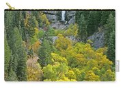 Fall Color And Waterfalls In Provo Canyon Utah Carry-all Pouch