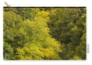 Fall Color Hills Mi 3 Carry-all Pouch