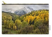 Fall Color In The Rockies Near Ouray Dsc07913 Carry-all Pouch